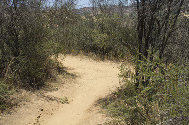 Hacienda Trail Junction
