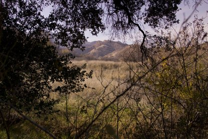 Towsley Canyon